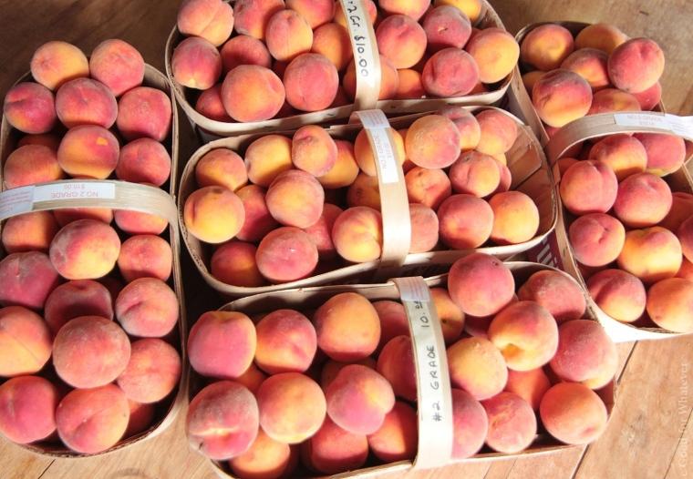 Peaches Table.JPG