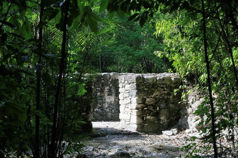 calakmul-emerges