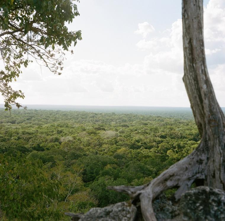 calakmul-estructura-2-west