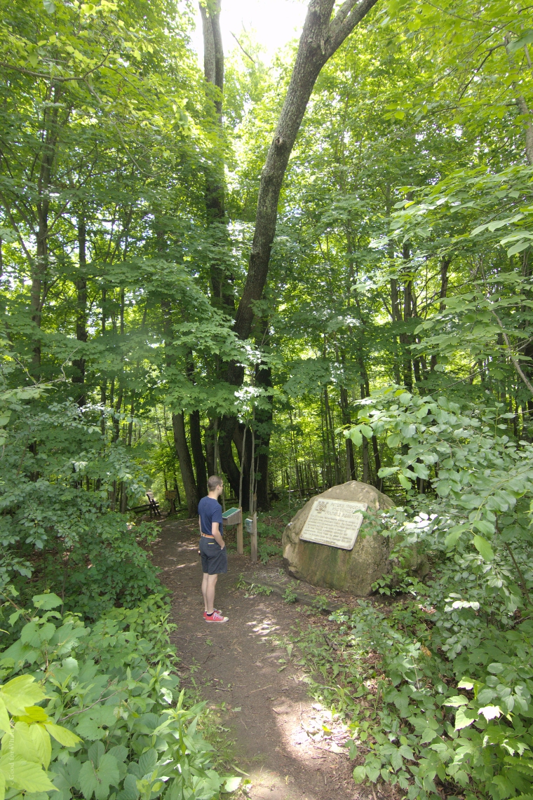 Peters Woods Entrance
