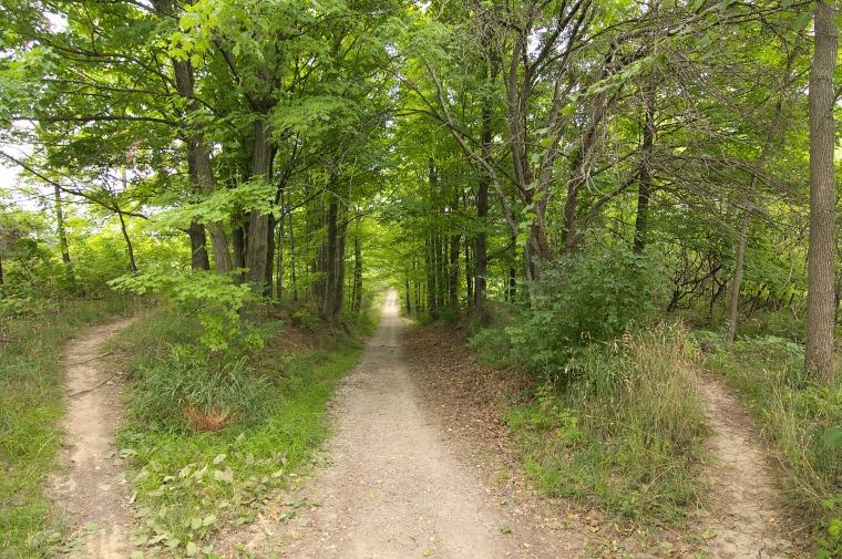 Short Hills Trails